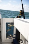 Get to Know Your Blackfin Baitwell