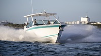 Check Out Our New Arrivals: The Blackfin Boat Lineup Just Got Bigger!